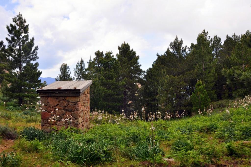 Toilettes du refuge I'Paliri