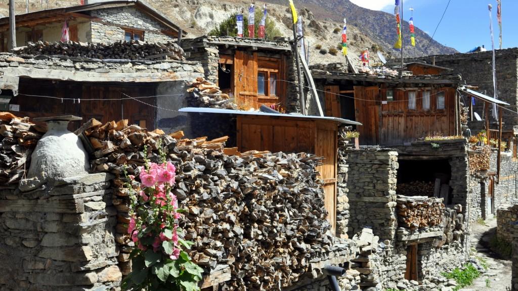 Tour nord des Annapurnas - Rue de Manang