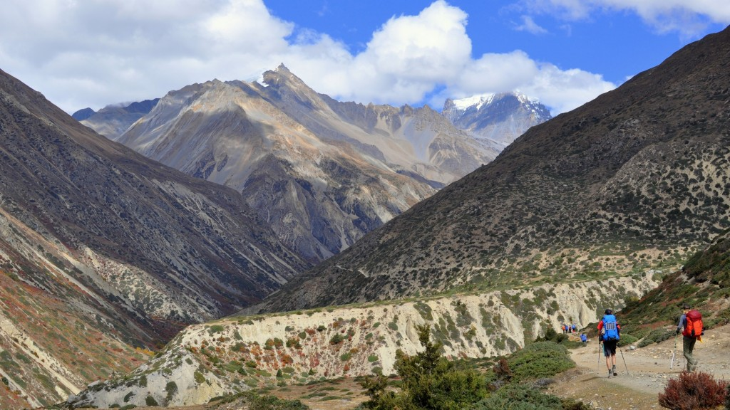 Tour nord des Annapurnas - Vallée de la Thorung Khola, vers Ghursang (3950m)