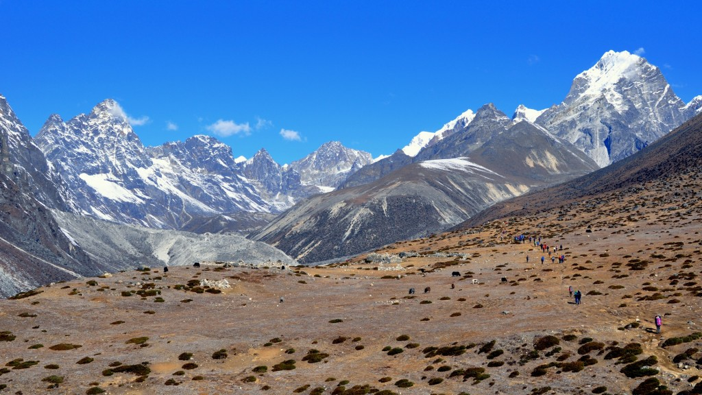 Sentier Dingboche - Lobuche, 4500m. Vallée du Chola (partie droite)