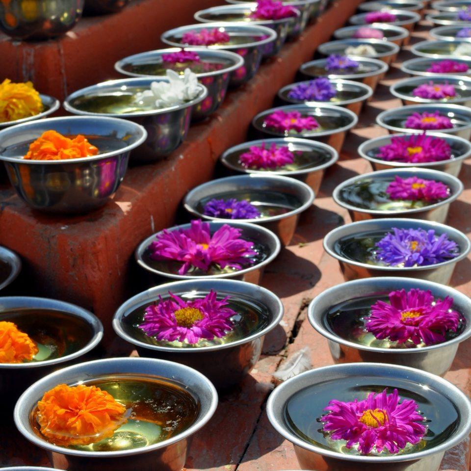 Stupa de Bodnath, offrandes de fleurs