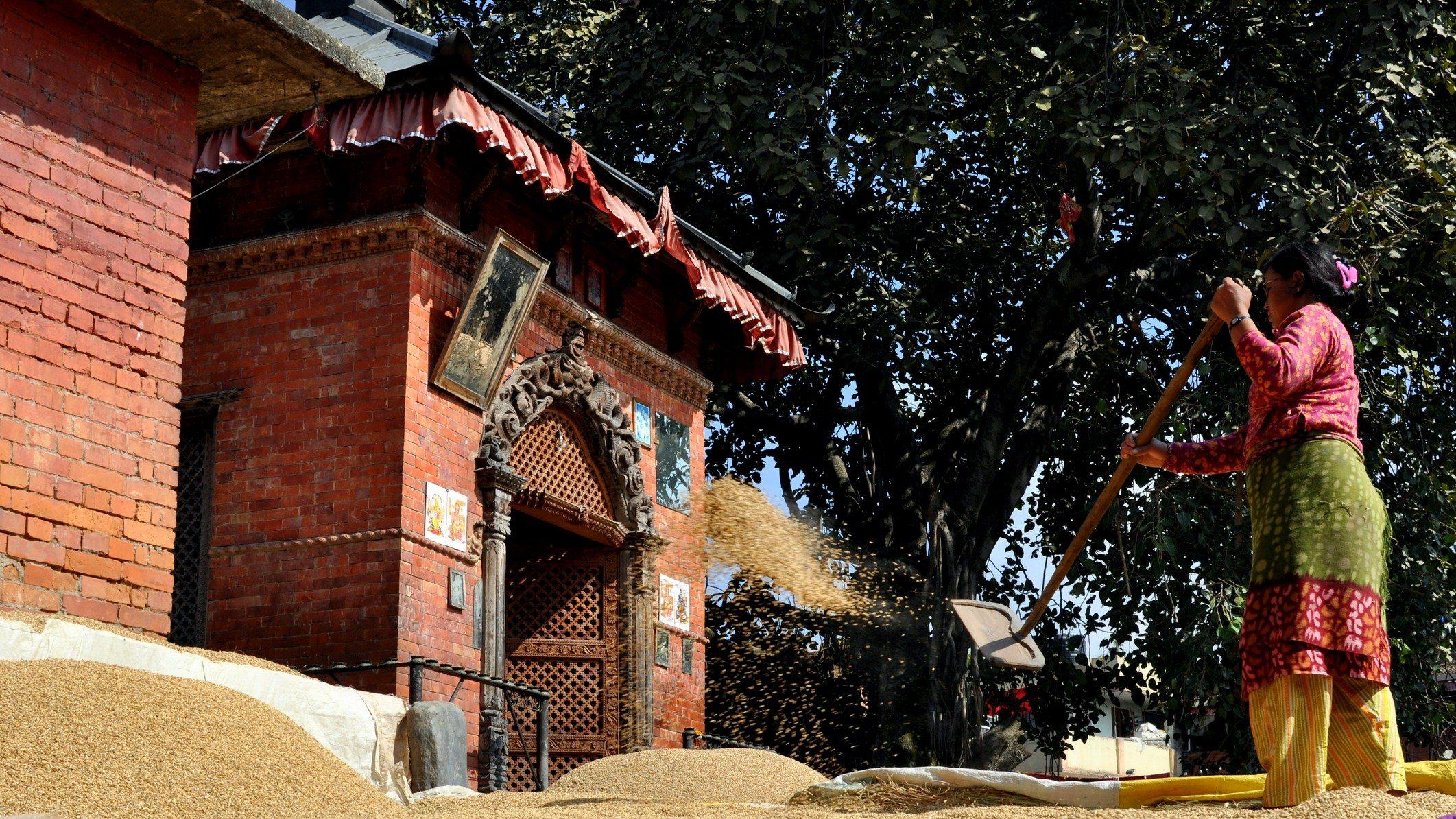 Vallée de Katmandou - Bhaktapur, vers le quartier des potiers