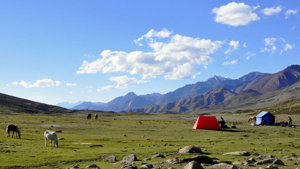 Vallée de la Markha, Camp de Nimaling (4700m)