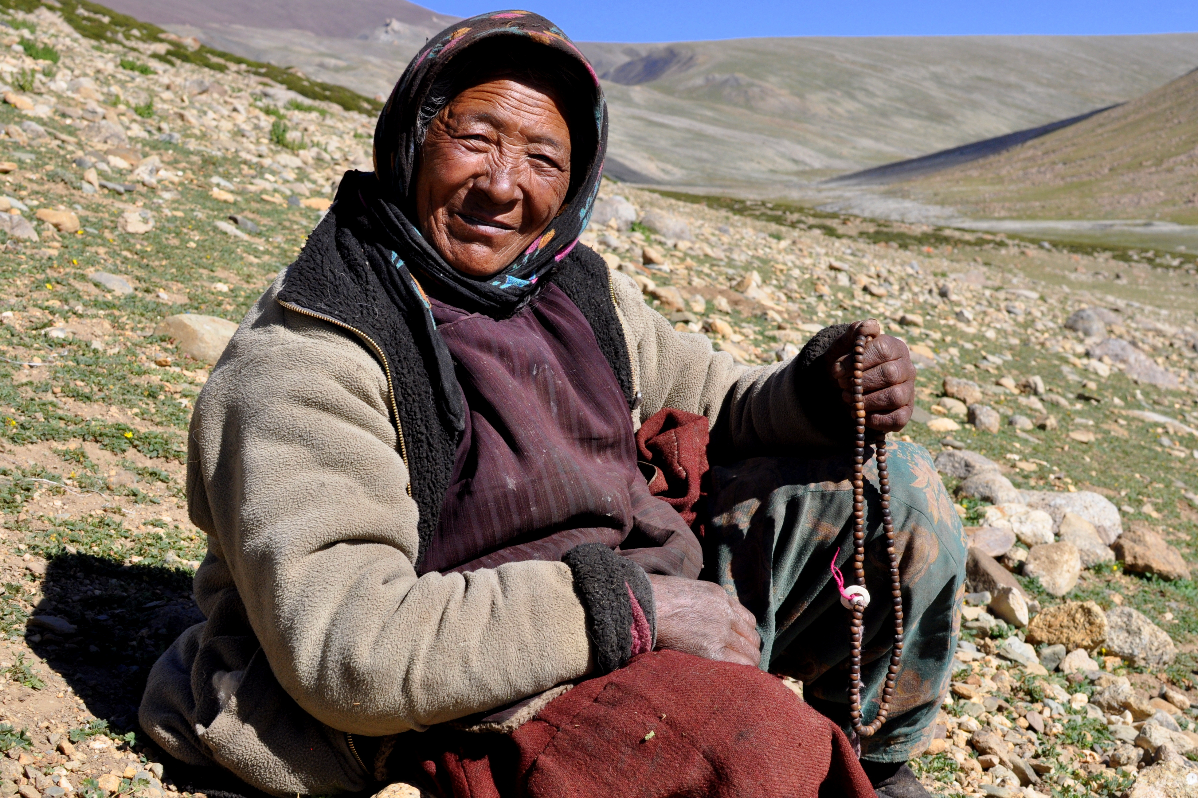 Bergère nomade, camp de Nimaling
