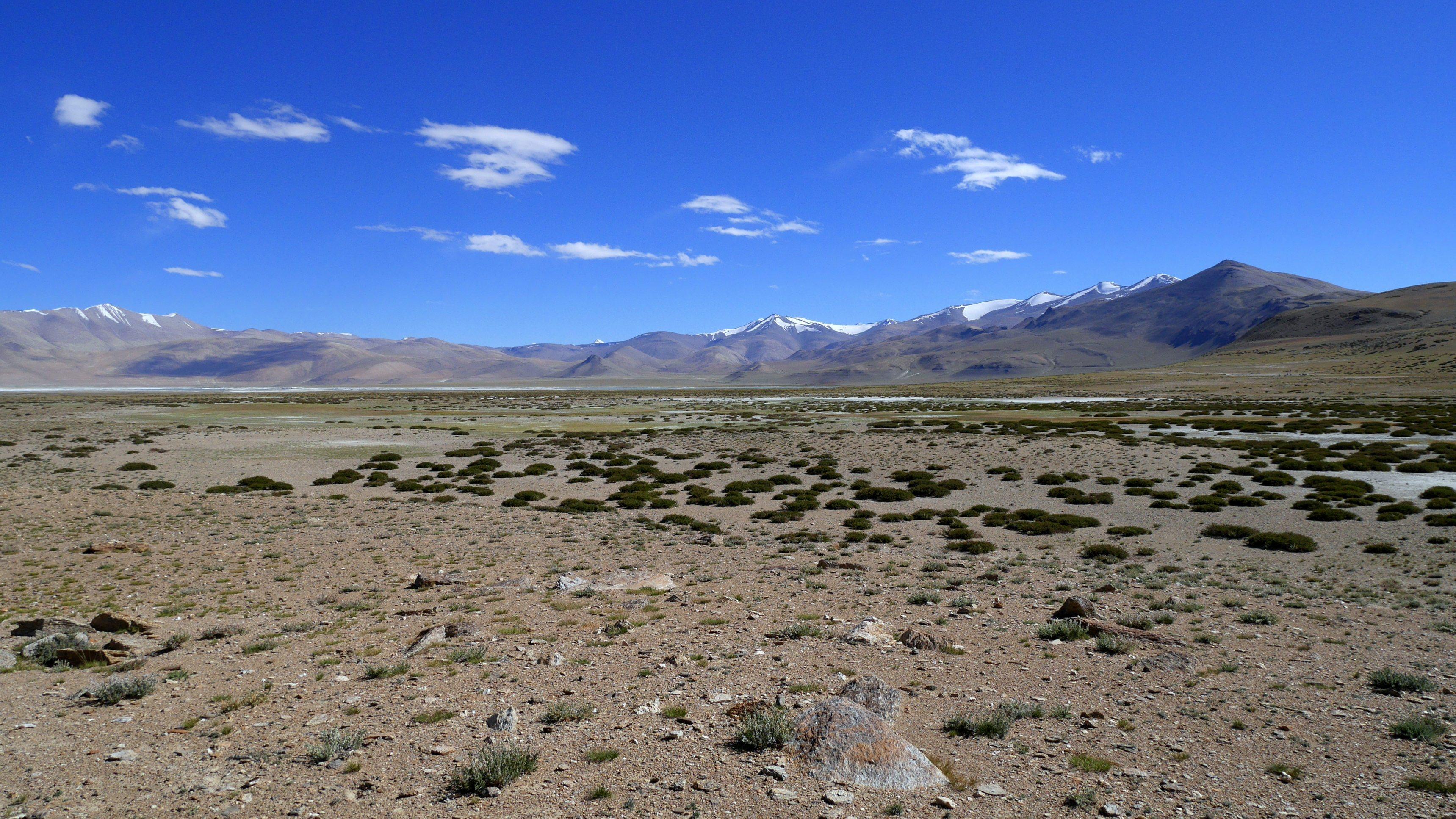 Changtang, Vue sur le lac Tso Kar, Camp de Pangunagu, 4580m