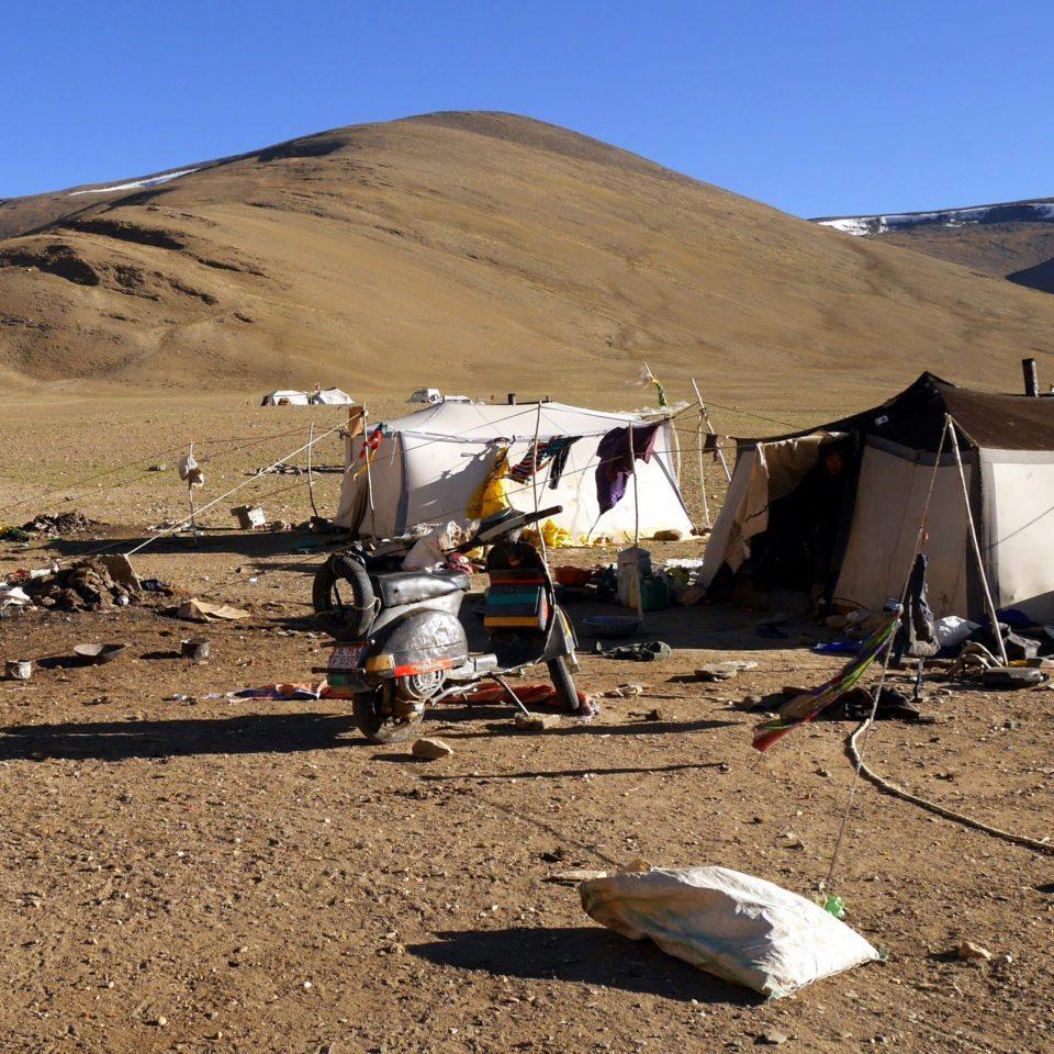 Camp nomade de Rachung Karu (4850m)