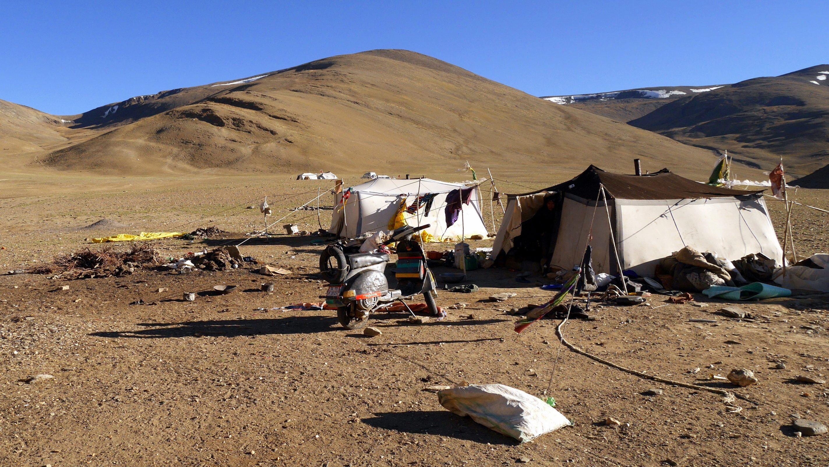 Changtang, Camp nomade de Rachung Karu (4850m)