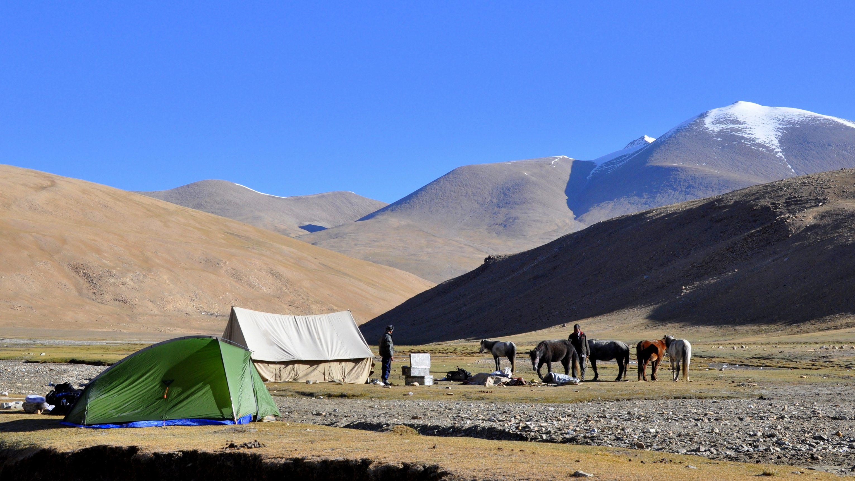 Changtang, Camp de Gyama Gompa (5150m)