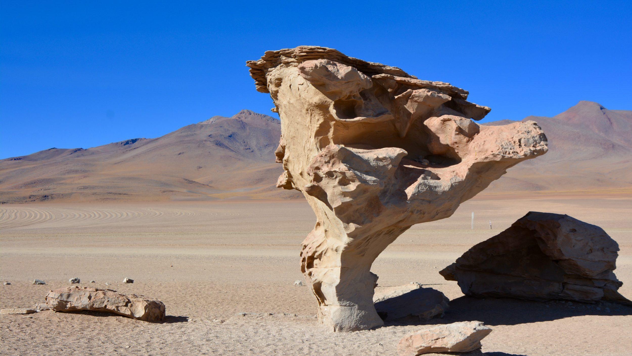Arbol de Piedra, Sud Lipez