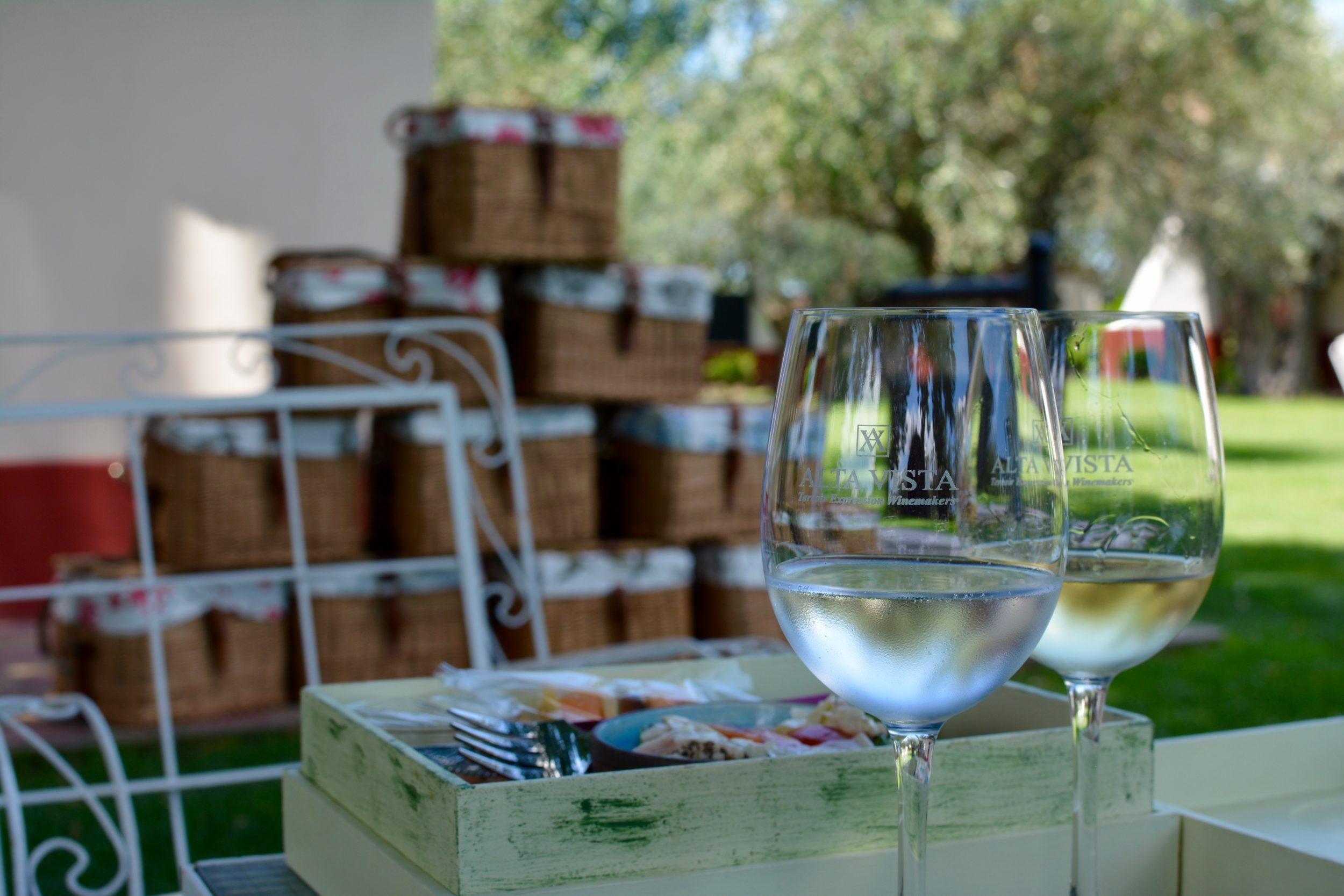 Alta vista wines, Lujan de cujo, Mendoza
