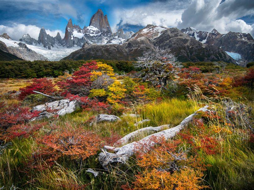 Fall patagonia