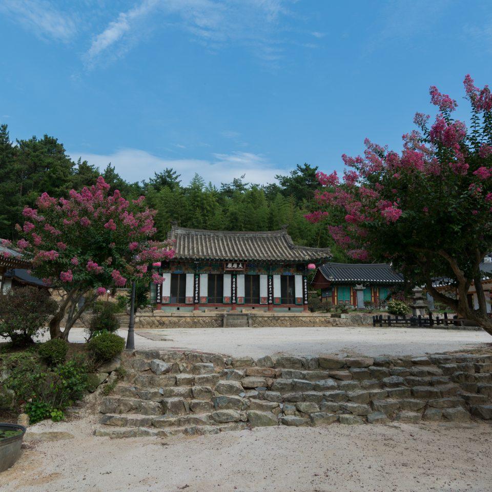 Coree-106
