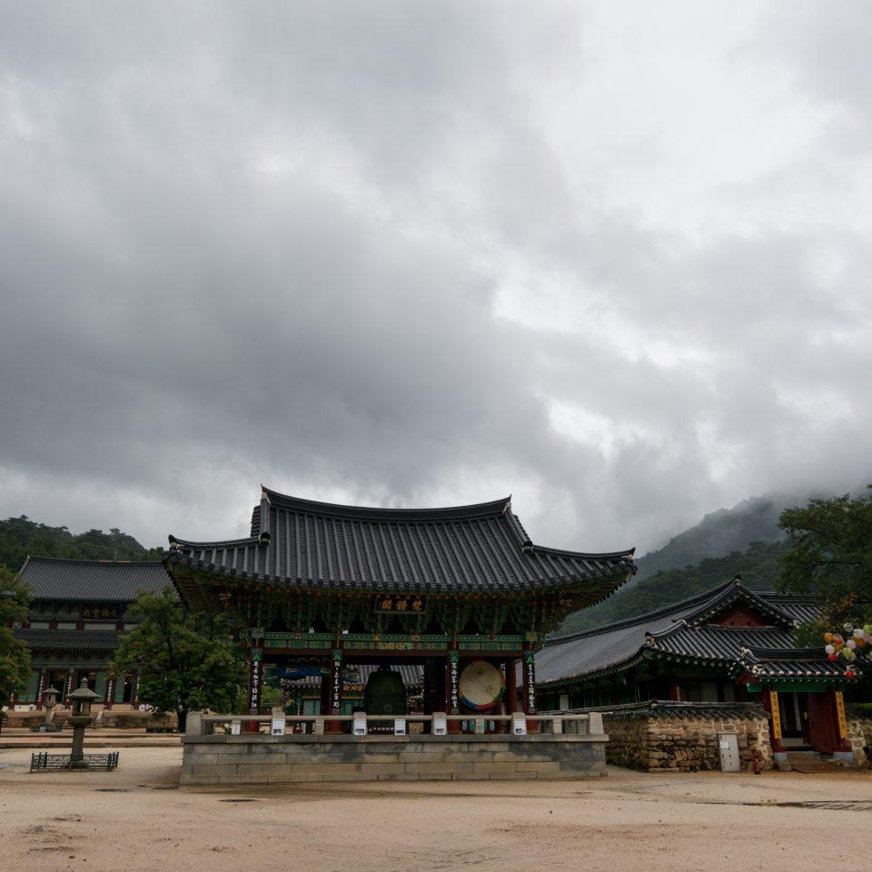 Coree-117